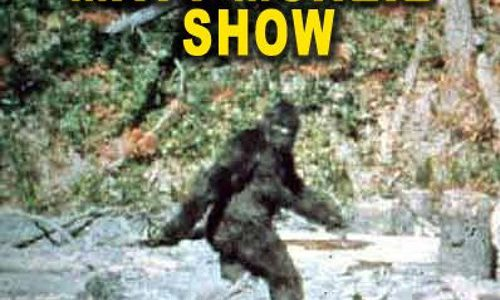 The Matt McNeil Show