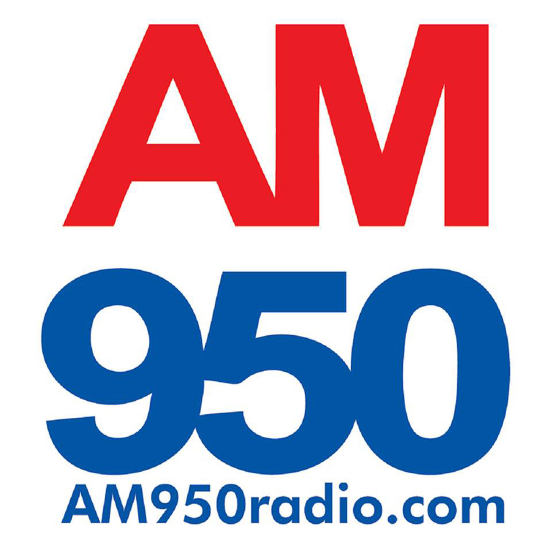 Minnesota Local Radio Hour - AM950 The Progressive Voice of Minnesota
