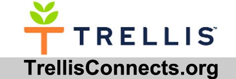 Trellis Web