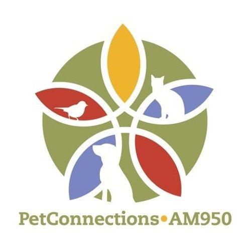 pet_connections_show_image
